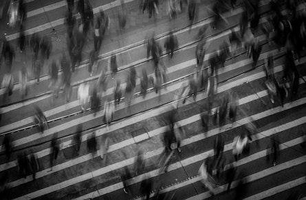 Addiction Research Across the Translational Spectrum